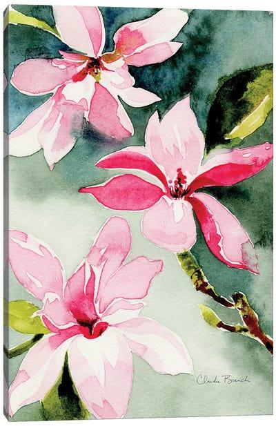 Magnolias Canvas Art Print