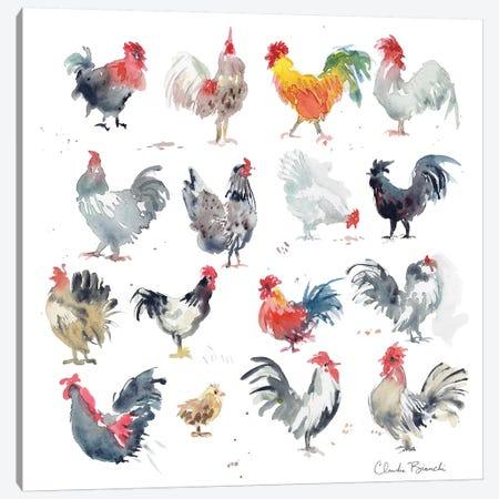 Mini Chickens Canvas Print #CBI40} by Claudia Bianchi Canvas Art Print