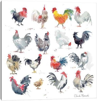 Mini Chickens Canvas Art Print