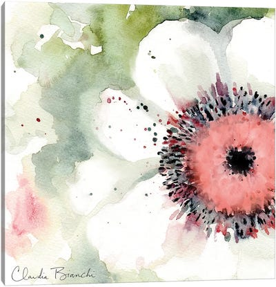 Anemonie Canvas Art Print