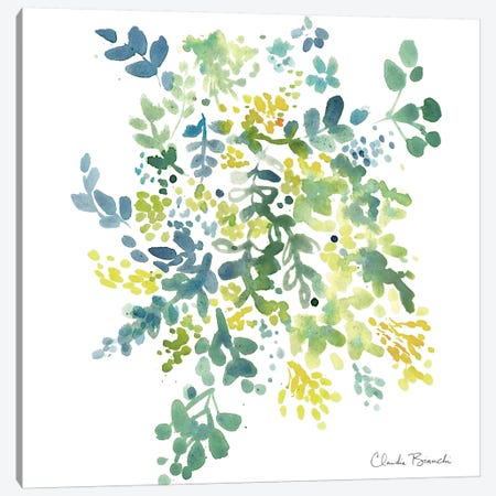 Saraon Canvas Print #CBI59} by Claudia Bianchi Canvas Artwork