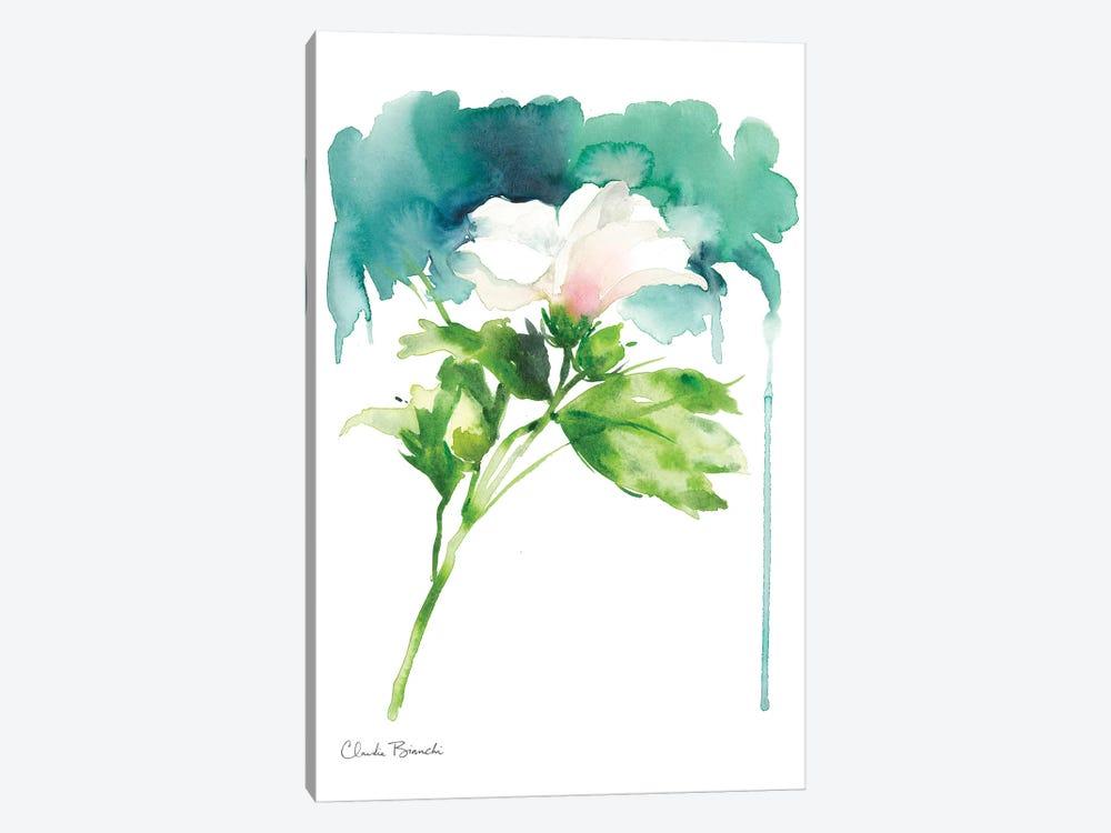 Single Rose Of Sharron by Claudia Bianchi 1-piece Canvas Art