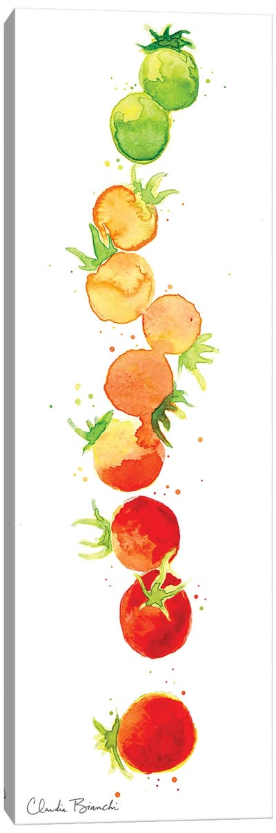 Tomato Ombre Canvas Art Print