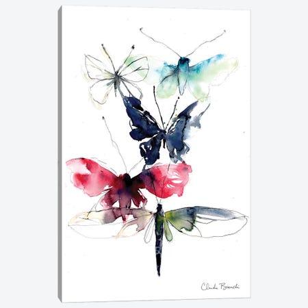 Wing Study Canvas Print #CBI84} by Claudia Bianchi Canvas Wall Art