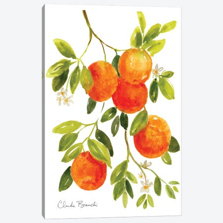 Oranges Canvas Print #CBI91} by Claudia Bianchi Canvas Art