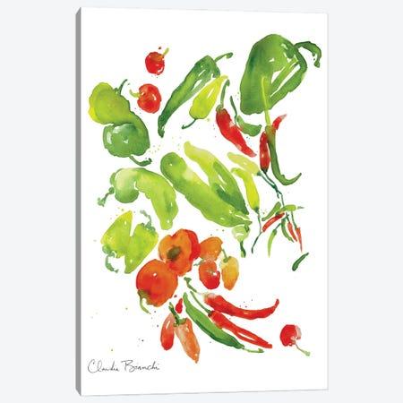 Salsa Garden Canvas Print #CBI95} by Claudia Bianchi Art Print