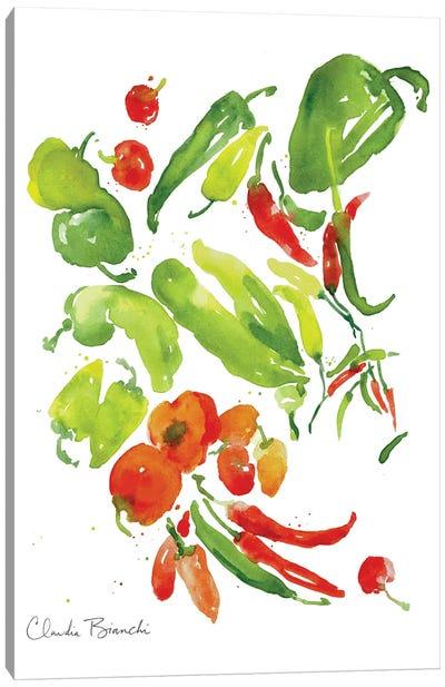 Salsa Garden Canvas Art Print