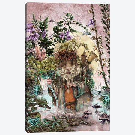 The Druid Of Hampshire Canvas Print #CBK20} by Cheryl Baker Canvas Print