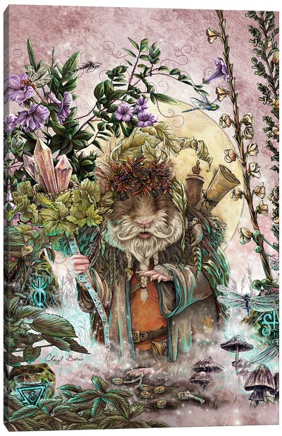 The Druid Of Hampshire Canvas Art Print