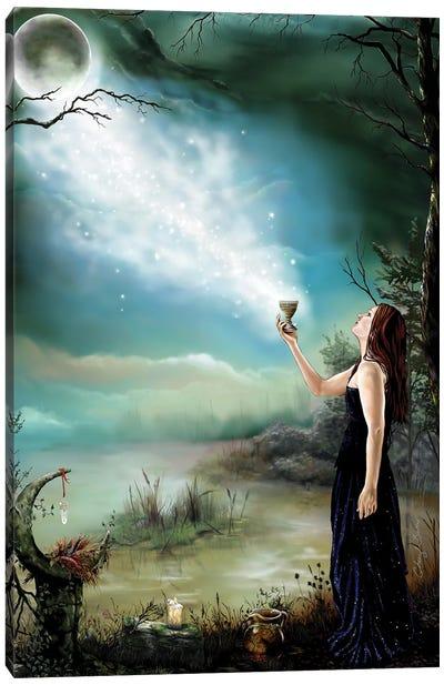 Enchantment Canvas Art Print