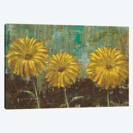 Morning Gold II Canvas Print #CBL12} by Carol Black Canvas Print