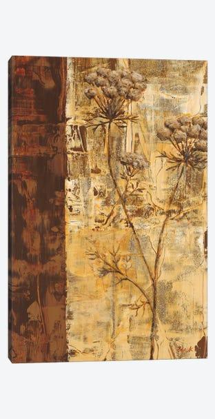 Sundew I Canvas Print #CBL15} by Carol Black Canvas Wall Art