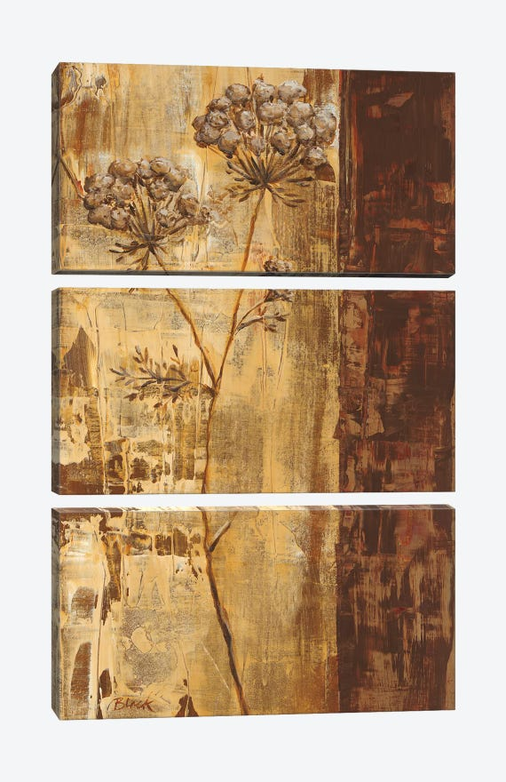 Sundew II by Carol Black 3-piece Canvas Wall Art