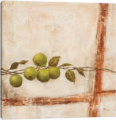 Crabapple I Canvas Art Print