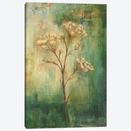 Green Tansy I Canvas Print #CBL27} by Carol Black Canvas Art Print
