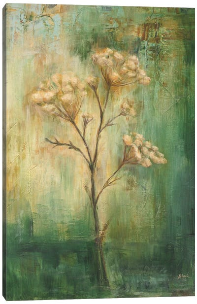 Green Tansy I Canvas Art Print