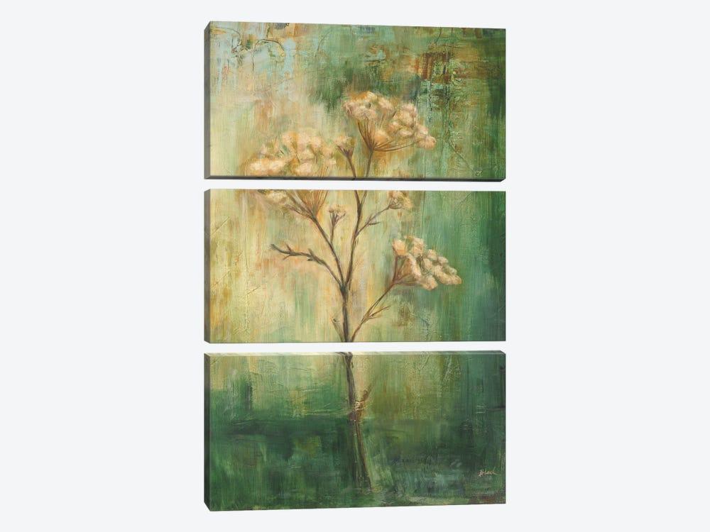 Green Tansy I by Carol Black 3-piece Canvas Art