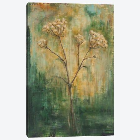 Green Tansy II Canvas Print #CBL28} by Carol Black Canvas Art