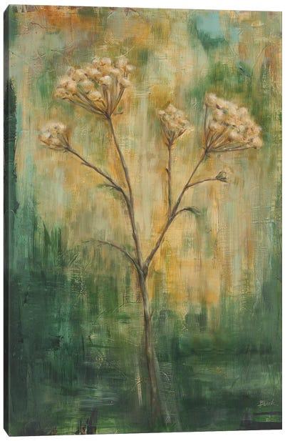 Green Tansy II Canvas Art Print