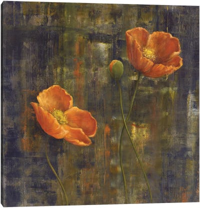 Iceland Poppies I Canvas Art Print