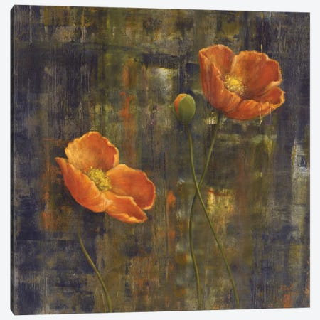 Iceland Poppies I Canvas Print #CBL29} by Carol Black Canvas Artwork