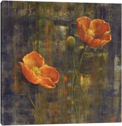 Iceland Poppies I Canvas Art Print