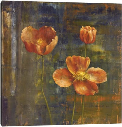 Iceland Poppies II Canvas Art Print