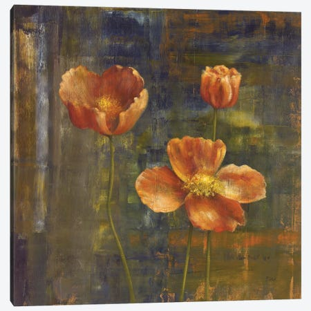 Iceland Poppies II Canvas Print #CBL30} by Carol Black Art Print