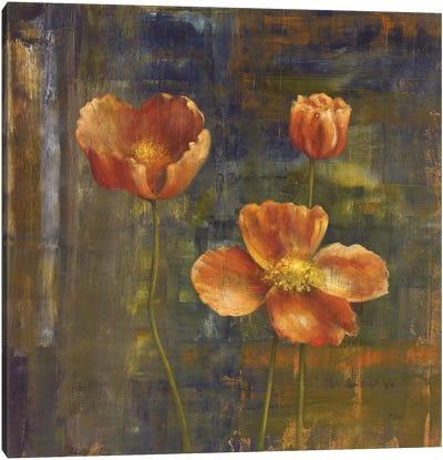 Iceland Poppies II Canvas Art Print