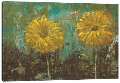 Morning Gold I Canvas Art Print