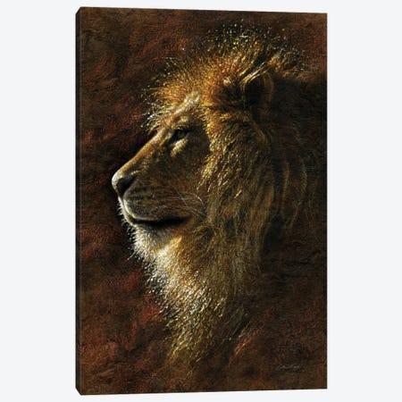 Lion Majesty Canvas Print #CBO107} by Collin Bogle Art Print