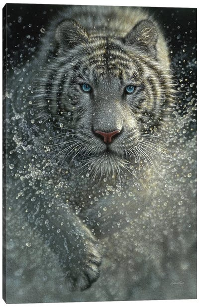 White Tiger - Wet and Wild  Canvas Art Print