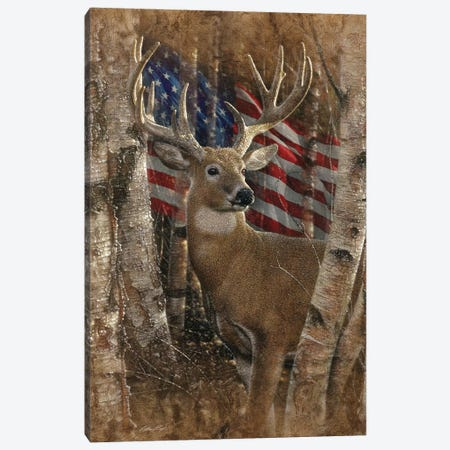 Whitetail Buck - America Canvas Print #CBO125} by Collin Bogle Canvas Print