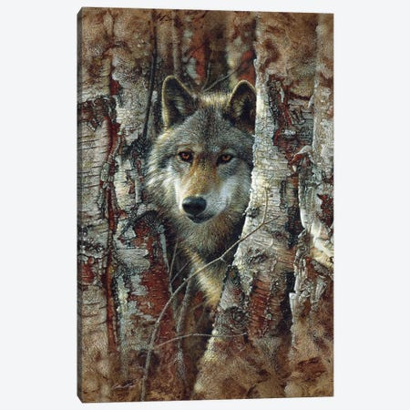 Wolf Spirit Canvas Print #CBO127} by Collin Bogle Canvas Print