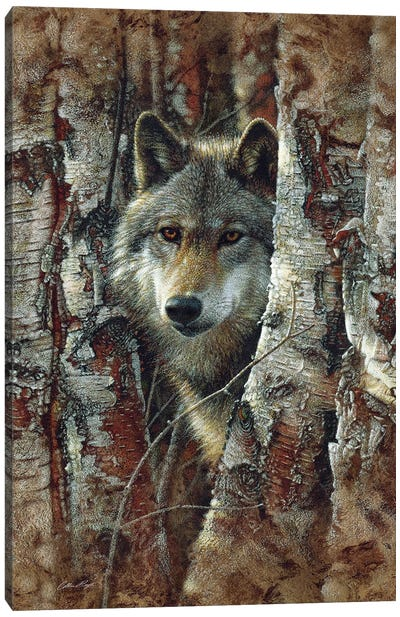 Wolf Spirit Canvas Art Print