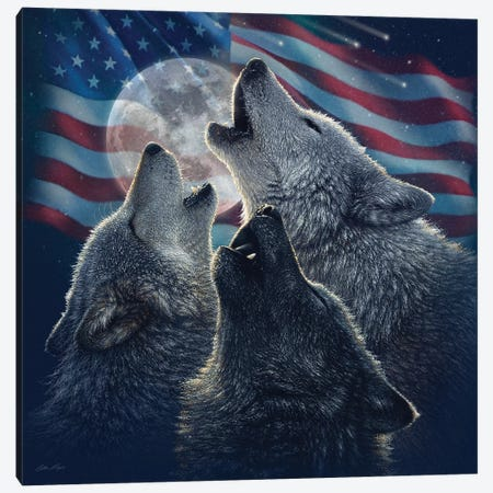 Wolf Trinity - America Canvas Print #CBO128} by Collin Bogle Canvas Wall Art