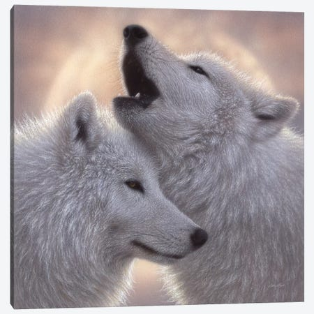 Wolves - Love Song Canvas Print #CBO129} by Collin Bogle Canvas Artwork