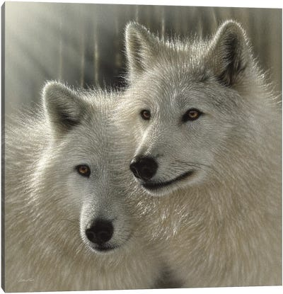 Wolves - Sunlit Soulmates Canvas Art Print