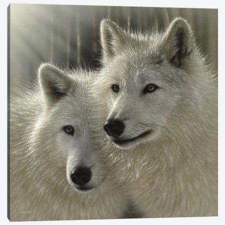 Wolves - Sunlit Soulmates Canvas Print #CBO130} by Collin Bogle Canvas Art Print