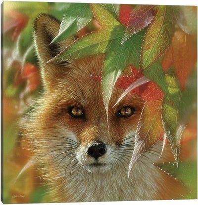 Autumn Red Fox Canvas Art Print