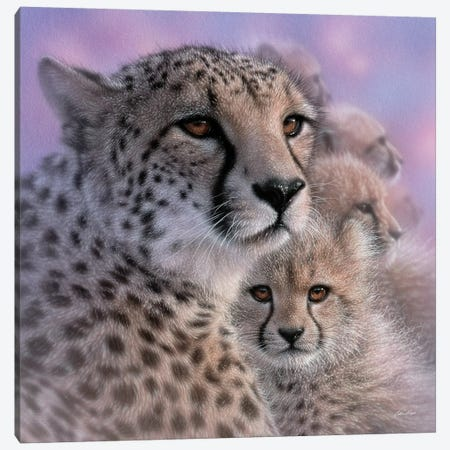Cheetah Mother's Love Canvas Print #CBO132} by Collin Bogle Canvas Print
