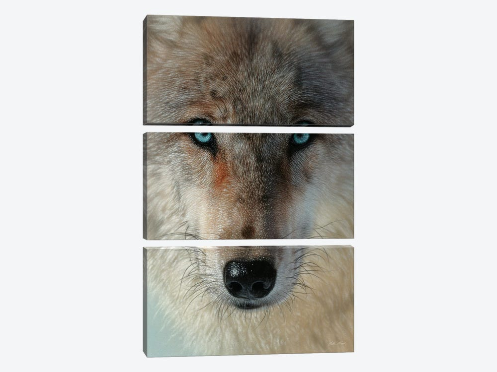 Inner Wolf Pack, Vertical by Collin Bogle 3-piece Canvas Art