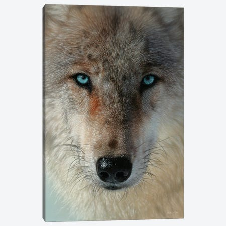 Inner Wolf Pack, Vertical Canvas Print #CBO134} by Collin Bogle Canvas Wall Art