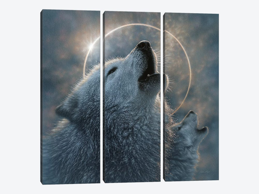 Wolf Eclipse, Square by Collin Bogle 3-piece Art Print