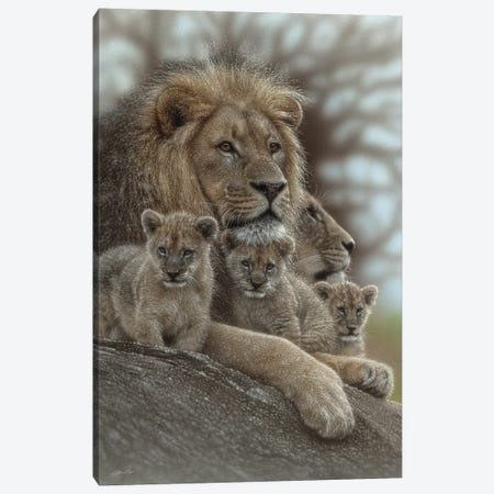 Lion - Family Man Canvas Print #CBO141} by Collin Bogle Canvas Wall Art