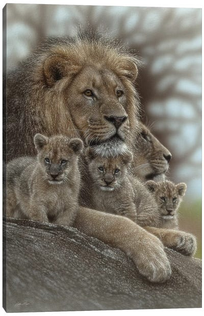 Lion - Family Man Canvas Art Print