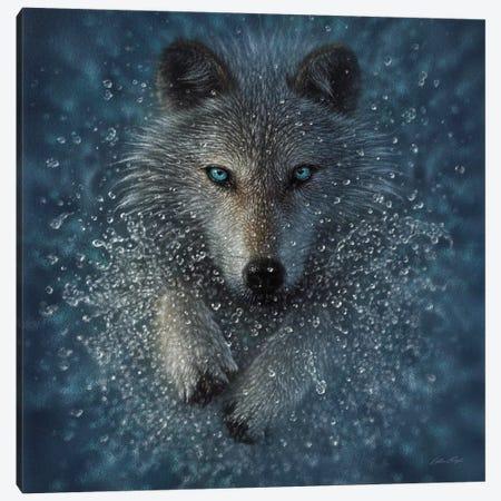 Running Wolf Splash - Square Canvas Print #CBO142} by Collin Bogle Canvas Art