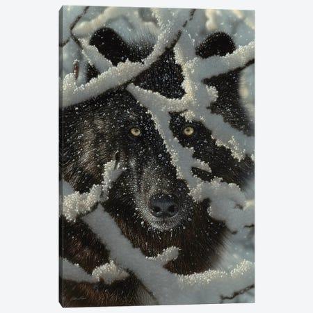 Winter's Black Wolf - Vertical Canvas Print #CBO152} by Collin Bogle Canvas Art Print