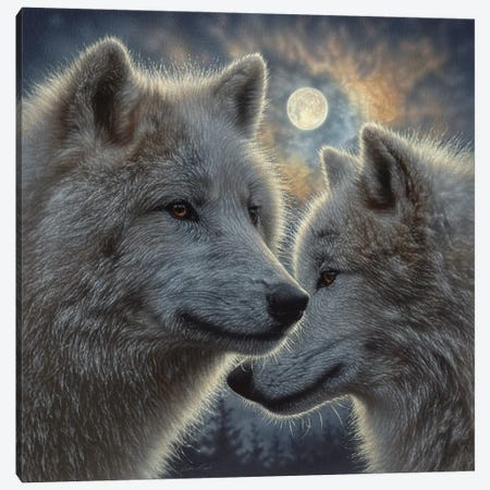 Moonlight Wolf Mates Canvas Print #CBO153} by Collin Bogle Art Print
