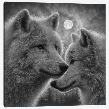 Moonlight Wolf Mates - Black & White Canvas Print #CBO154} by Collin Bogle Canvas Wall Art